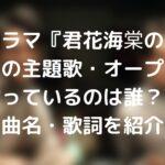 君花海棠の紅にあらずの主題歌・オープニング曲を歌っているのは誰?歌手名や曲名・歌詞を紹介!